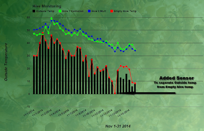Graph showing the temperatures inside the three hives, and beginning November 15, outside the hives.